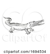 West African Slender Snouted Crocodile Endangered Wildlife Cartoon Drawing