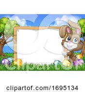 Easter Bunny Rabbit Eggs Sign Background Cartoon