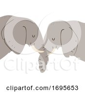 Elephant Entwine Trunks Show Affection