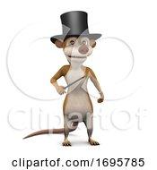 3d Meerkat Magician
