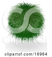 Environmental Clipart Illustration Image Of A Grassy Green Ball Plant