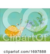 Spring Time Snail By Flowers