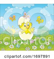 Poster, Art Print Of Hatching Spring Chick