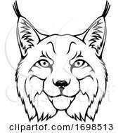 Tough Lynx Mascot
