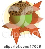 Clipart Picture Of A Whole Acorn On Top Of Fallen Autumn Maple Leaves by Maria Bell