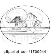 American Barn And Oak Tree