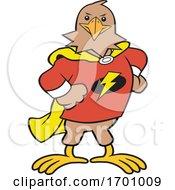 Cartoon Super Hero Hawk Mascot