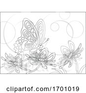 Poster, Art Print Of Beautiful Butterfly On Flowers