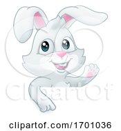Easter Bunny Rabbit Cartoon Sign