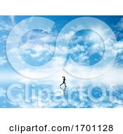 3D Silhouette Of A Female Jogging Against A Sky Which Is Reflected In Ground