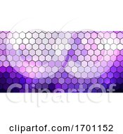 Banner Design With Hexagonal Pattern