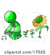 Lime Green Man Kneeling By Growing Sunflowers To Plant Seeds In A Dirt Hole In A Garden
