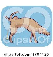 Poster, Art Print Of Dog Symptom Excessive Peeing Illustration