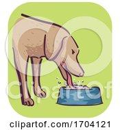 Poster, Art Print Of Dog Symptom Excessive Drinking Illustration