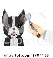 Poster, Art Print Of Dog Ear Check Up Illustration