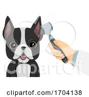 Dog Ear Check Up Illustration