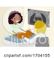 Stickman Vet Animal Ultrasound Illustration