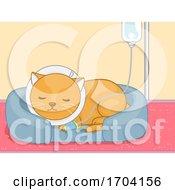 Cat Pet Dextrose Sick Illustration