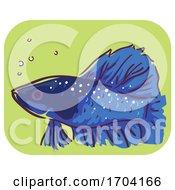 Betta Fish Symptom Ich White Spots Illustration
