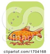 Barb Fish Symptom Stay Down Illustration