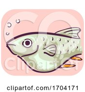 Barb Fish Bloated Constipation Illustration