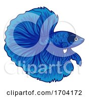 Betta Pet Fish Illustration by BNP Design Studio
