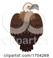 Vulture Back View Illustration