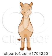 Camel Front View Illustration