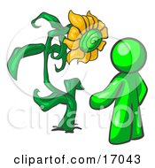 Lime Green Man Standing Proud In Front Of A Giant Yellow Sunflower In His Garden
