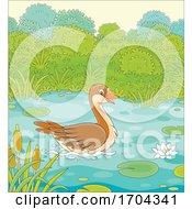 Wild Goose On A Pond