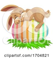 Easter Bunny Rabbit by Vector Tradition SM