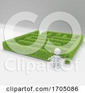 Poster, Art Print Of 3d Morph Man With Maze