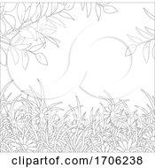 Daisies And Foliage