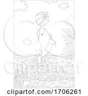 Beluga Whale With A Beach Ball