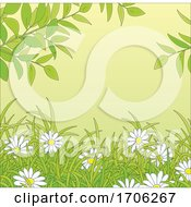Poster, Art Print Of Daisies And Foliage