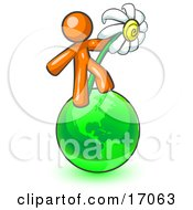 Orange Man Standing On The Green Planet Earth And Holding A White Daisy Symbolizing Organics And Going Green For A Healthy Environment Clipart Illustration by Leo Blanchette
