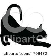 Poster, Art Print Of Silhouette Cat Pet Animal