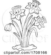 Black And White Daffodil Flowers