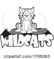 Cartoon Black And White Leopard School Sports Mascot Sitting On Wildcats Text
