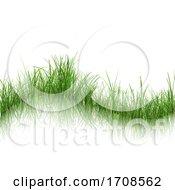 Grassy Background On White
