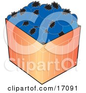 Carton Of Fresh And Plump Blueberries Clipart Illustration