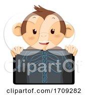Monkey Mascot Xray Illustration