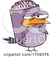 Cartoon Bird Brain by toonaday #COLLC1709376-0008