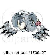 Elephant Sports Animal Mascot