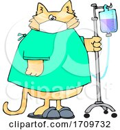 Cartoon Sick Cat Wearing A Hospital And Walking With IV Fluids In A Hospital