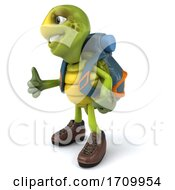 3d Hiker Tortoise On A White Background