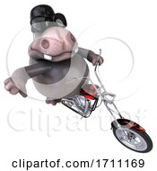 3d Hippo on a White Background by Julos #COLLC1711169-0108