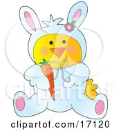 Yellow Chick Disguised As The Easter Bunny Holding A Carrot