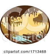 Louisiana Swamp And Alligator