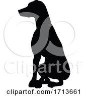 05/12/2020 - Dog Silhouette Pet Animal